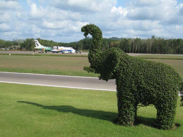 They use grass elephants to wash the planes at Trat airport...