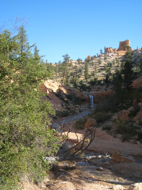 At the start of the Moss Cave trail, Bryce Canyon