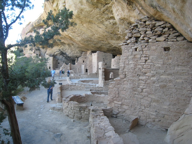 General view of Spruce Tree House